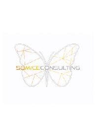 SB MICE Consulting logo