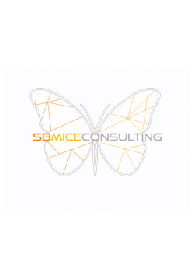 SB Mice Consulting affiliation logo